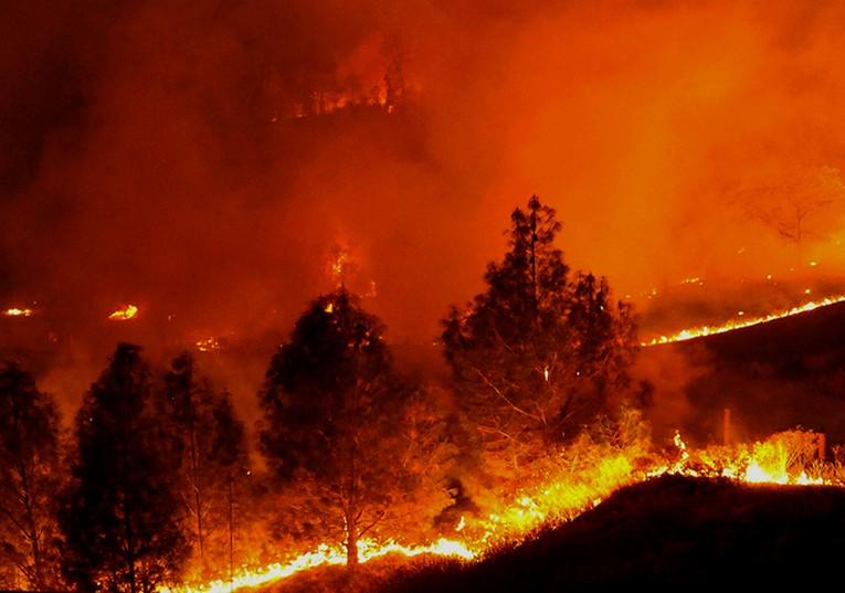 Rádio Regional do Centro: Investigação:Apoios à investigação de incêndios não têm continuidade assegurada