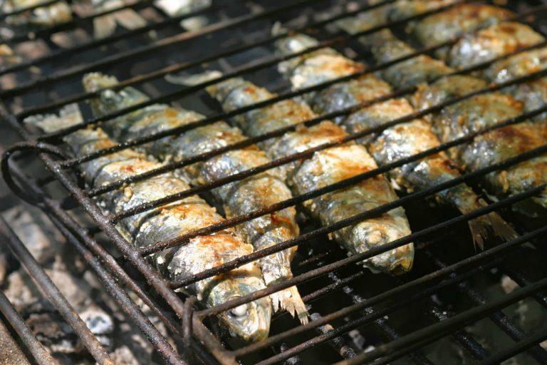 Rádio Regional do Centro: Pesca da sardinha só em Junho, a tempo dos Santos Populares