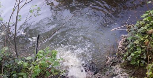 Rádio Regional do Centro: ETAR vai acabar com descargas poluentes em Cantanhede e Mira