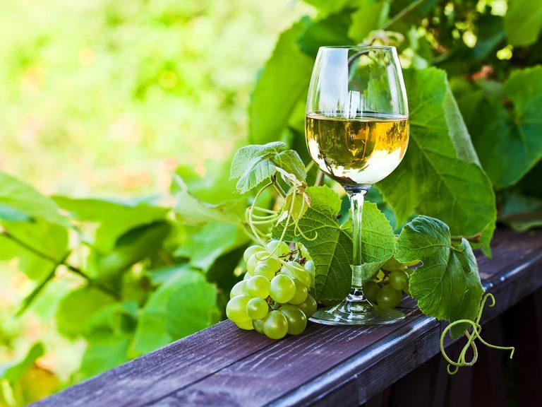 Rádio Regional do Centro: Programa da Manhã: Feira do Vinho Verde, do Lavrador, Gastronomia e Artesanato