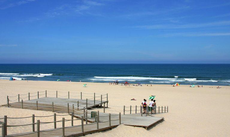 Rádio Regional do Centro: CATRAIA regressa à Praia da Tocha