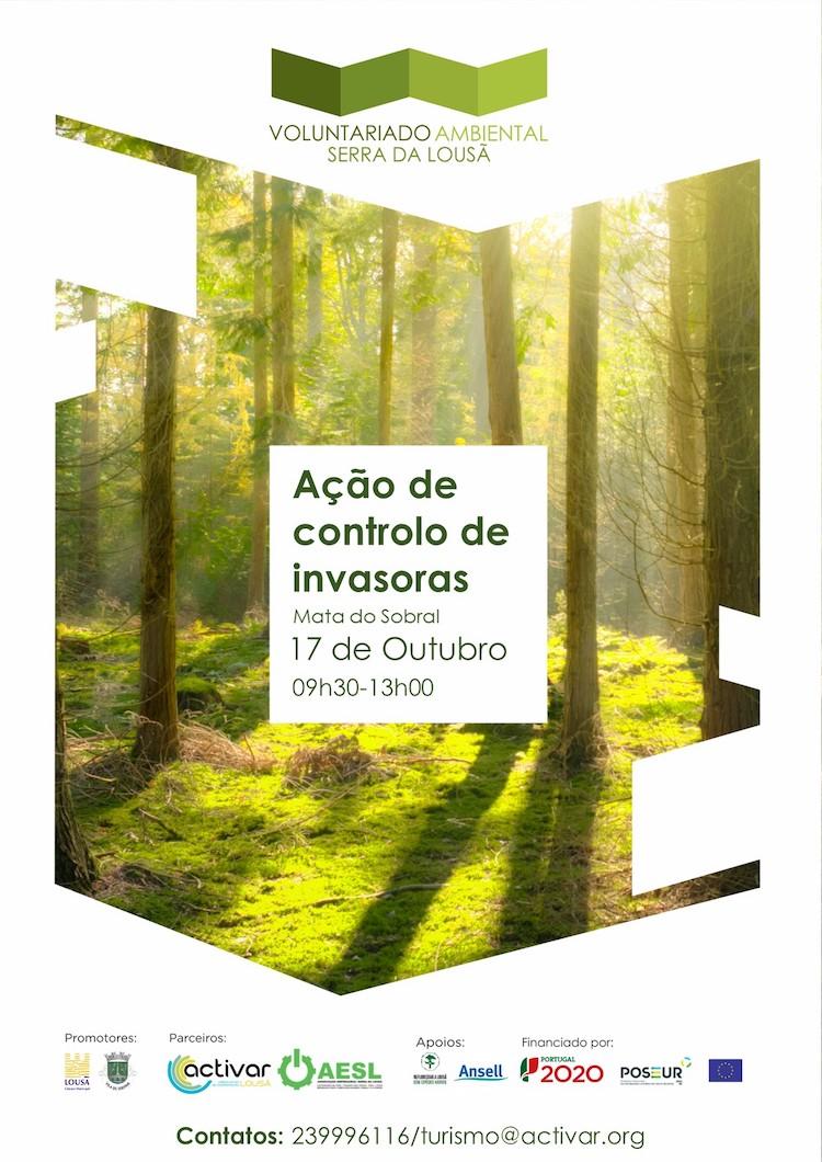 Rádio Regional do Centro: Nova acção de voluntariado ambiental na Mata do Sobral já no próximo sábado