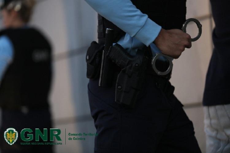 Rádio Regional do Centro: Homem e mulher detidos por furto de eucaliptos em Penacova