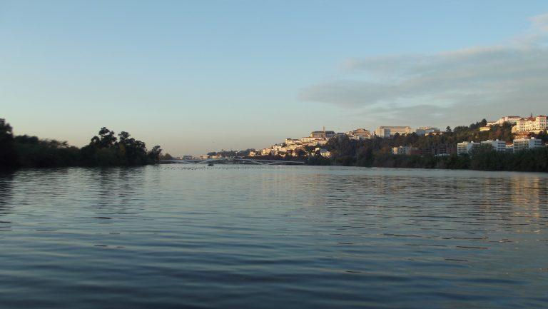 Rádio Regional do Centro: Estudo do MARE alerta para a fraca qualidade ecológica dos rios em todo o mundo