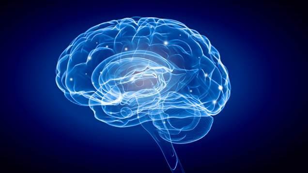 Rádio Regional do Centro: UC promove Semana Internacional do Cérebro através de sessões online em Março