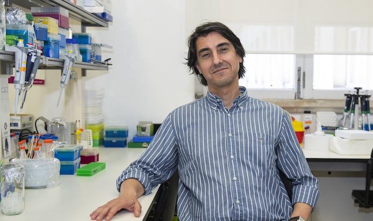 """Rádio Regional do Centro: Nanopartícula contra cancro criada na UC obtém estatuto de """"medicamento órfão"""""""