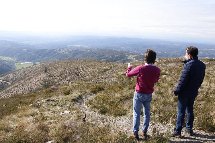 Rádio Regional do Centro: Arganil: arrancaram as acções de rearborização da Floresta da Serra do Açor