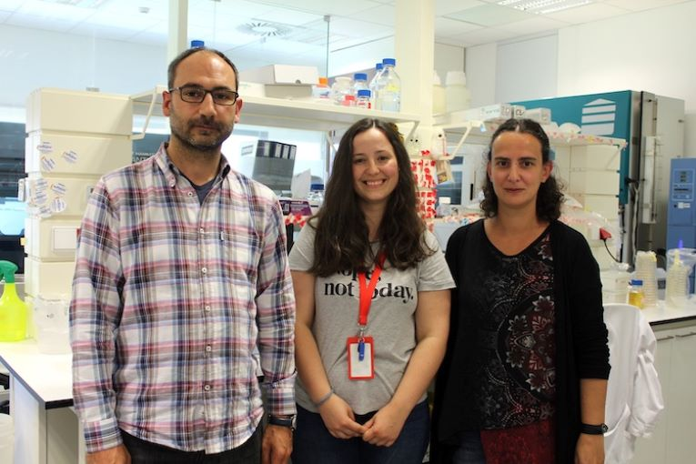Rádio Regional do Centro: UC: Cientistas descobrem novo mecanismo da infecção pela bactéria Salmonella