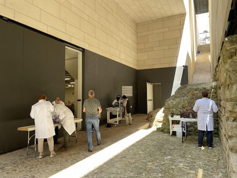 Rádio Regional do Centro: Museu Machado de Castro preserva património enquanto interage com o público