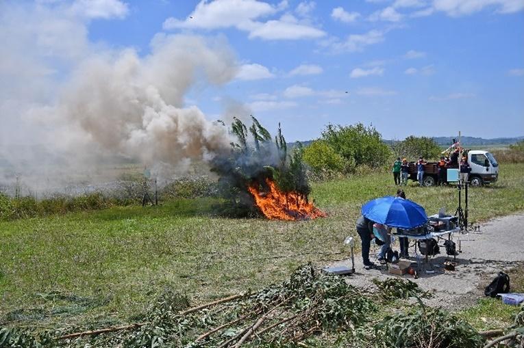 Rádio Regional do Centro: Investigadores realizaram ensaios de comportamento do fogo em Montemor-o-Velho