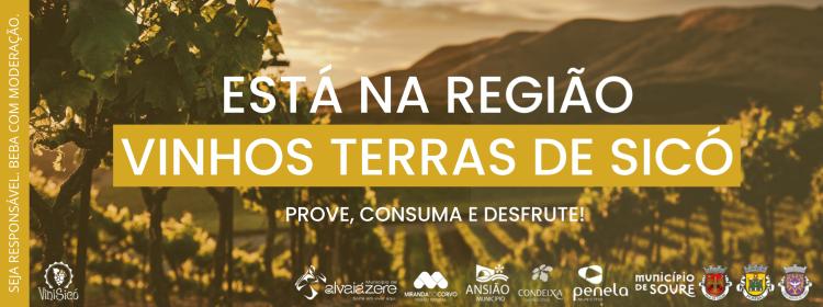 Rádio Regional do Centro: Autarquias de Sicó juntas pela promoção da região de vinhos