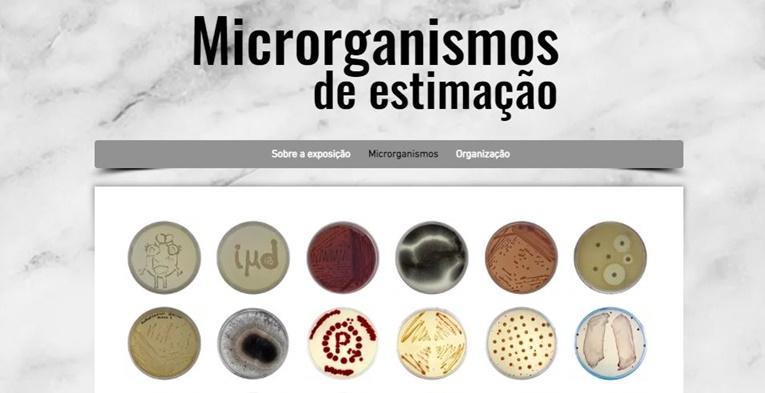 Rádio Regional do Centro: Dia Internacional do Microrganismo assinalado com a exposição Microrganismos de Estimação