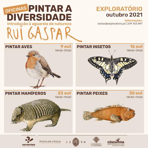 Rádio Regional do Centro: Oficinas de introdução à aguarela de natureza no Exploratório de Coimbra